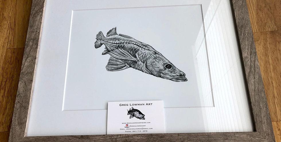 framed common snook art print for sale