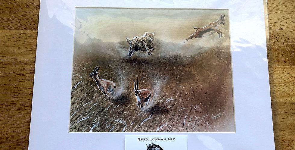 Hunting Cheetah Art Print