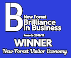 New Forest Brilliance in Business Awards Winner 2018