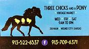 Sponsor Three Chicks And a Pony.jpg