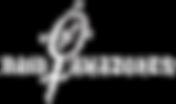 v4_logo_raid_amazones_blanc.png