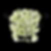 o bosque das patinhas servicos animais porto maia matosinhos norte
