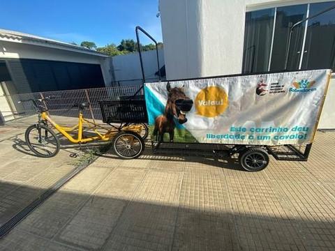 TAQUARI/RS: ONG abre inscrições para interessados em trocar cavalo por triciclo