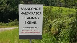 Projeto preve a inserção de placas contra abandono e maus-tratos a animais em Taquari/RS