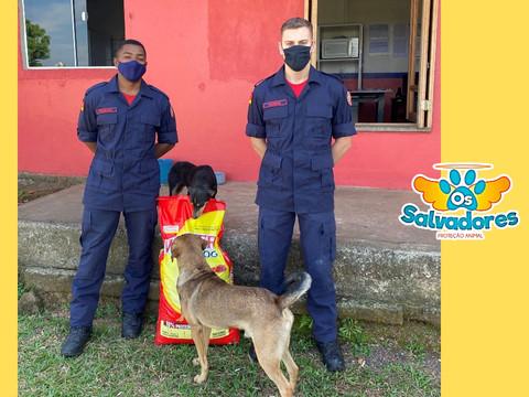 ONG SALVADORES: Cães comunitários são alimentados pelo Corpo de Bombeiros de Taquari/RS