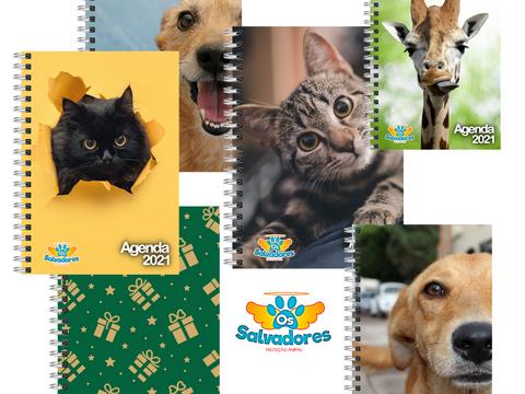 ONG de Taquari/RS lança linha de agendas 2021 em prol dos animais de rua