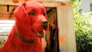"""Clifford é o novo """"cachorrão vermelho"""" que estreia nos cinemas em dezembro"""