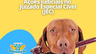 Ações judiciais no Juizado Especial Cível (JEC)