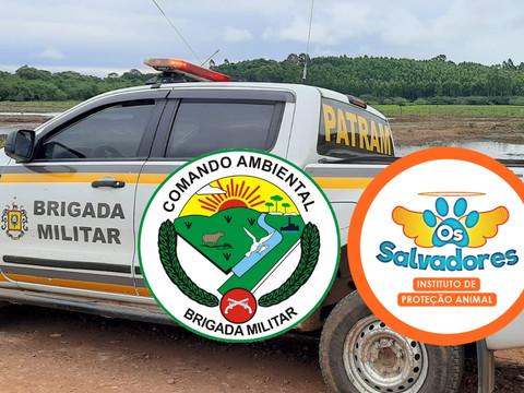 1º Batalhão Ambiental da Brigada Militar realiza vistoria em animais em Taquari/RS