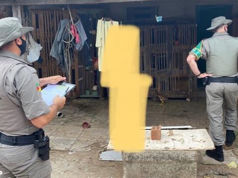 ONG SALVADORES acompanha Brigada Ambiental em denúncia de criação de galos