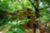 La Cabane perchée dans les arbres, gîte insolite en Cévennes, Gard, Occintanie, pour une nuit, un week-end, des vacances, un hébergement original pour un séjour romantique, de rêve dans le Parc national des Cévennes