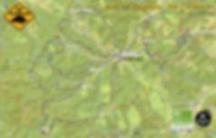 cinghiale ROAD90k-Ci-19.jpg