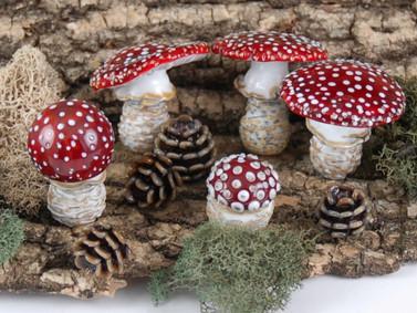 Fly Agaric Mushrooms & Pinecones