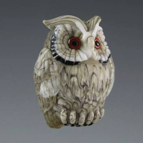 Northern White-faced Owl.jpg