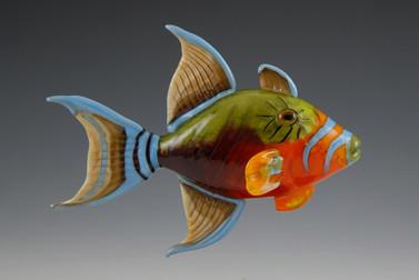 FISH & SEALIFE