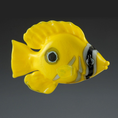 Eclipse Butterfly Fish