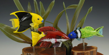 Tropical Fish Grouping