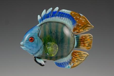 Blue Green Discus Fish