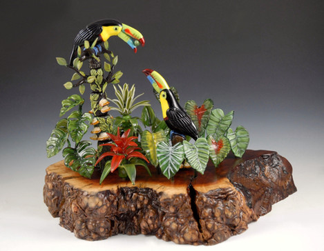 Courtship: Keel-billed Toucans