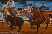 Steer Wrestling Sunday