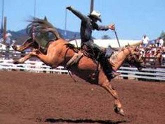 Saddle Bronc Saturday