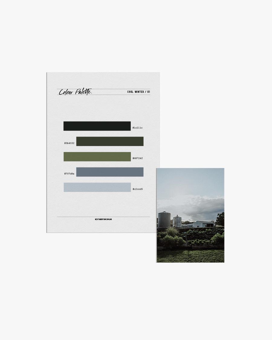 Colour Palette - Cool Winter