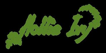 hi-logo.png