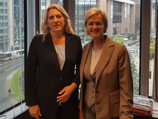 Republic of Srpska President pays a visit to Brussels