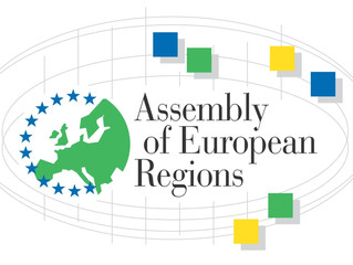 Republic of Srpska at the AER Committees' Spring Plenary