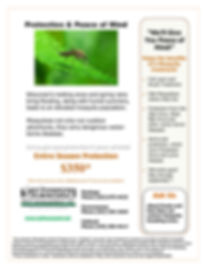 Mosquito flyer image 2019.jpg