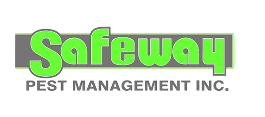 Safeway green and grey logo.png