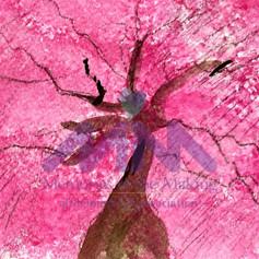 Daydreamer by Joan Hunder
