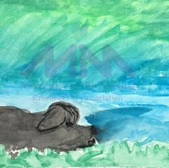 "Doggy Sleeping by Karen Dean ""Cookie"""