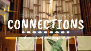 CONNECTIONS: Reconnecting with Palm Branches, Donuts, Trombones, and Small Groups