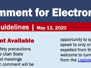 Public Comment for Electronic Meetings