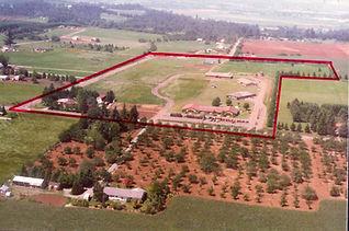 School Land.jpg