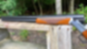 Picture of Ceakoted Shotgun