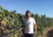 ¿Que es el vino organico? Espacio de charlas para aprender