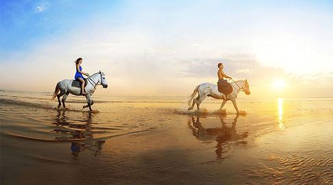 Rutas a caballo, rutas a pie y rutas BTT por las playas y la zona