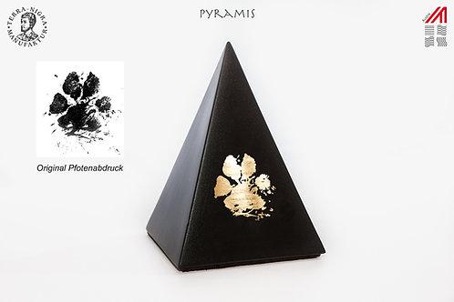 Pyramis mit Pfotenabdruck