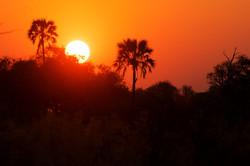 okavango_sunset_2