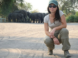 irene_with_elephants_1