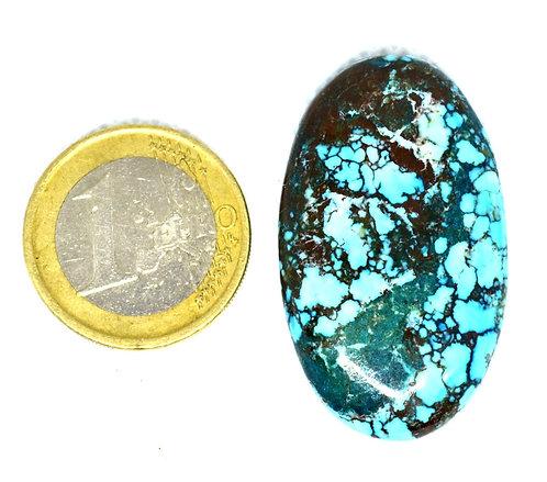 Turquoise magnésite