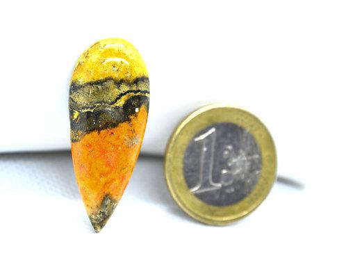 Jaspe bourdon (bumblebee)