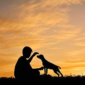 a man's best friend, familiehond, chien de famille