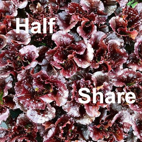 CSA Half Share