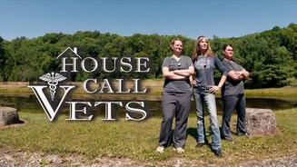 House Call Vets Program