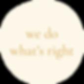 wonky_circle_cream.png