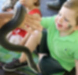 Snake Party Reptile party Kids reptile party