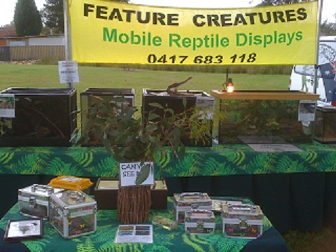 Wildlife Display